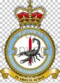 No 3 Squadron, Royal Air Force Regiment.jpg