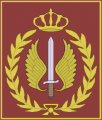 Special Forces Brigade, Royal Jordanian Army.png