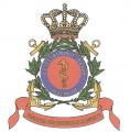 Naval Medical Service, Netherlands Navy.jpg