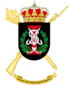 II-1st Army Health Support Unit, Spanish Army.png