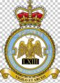 No 63 Squadron, Royal Air Force Regiment.jpg