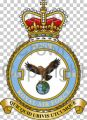 No 1310 Flight, Royal Air Force.jpg