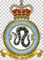 No 26 Squadron, Royal Air Force Regiment.jpg