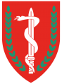 Medical Corps, Israeli Ground Forces3.png