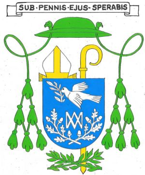 Arms of Aloys Elloy