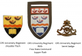 Regiment Universiteit Oranje-Vrystaat (University of Orange Free State Regiment), South African Army.png