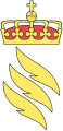 Norwegian Directorate for Fire and Electricity Safety.png