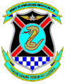 Special Operations Air Group No 10, Air Force of Venezuela.png