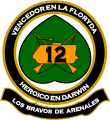 Mechanized Infantry Regiment No 12 General Arenales, Argentine Army.png