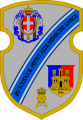 49th Infantry Regiment Parma, Italian Army.png