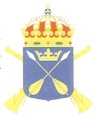 13th Infantry Regiment Dalecarlia Regiment, Swedish Army.jpg