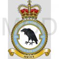 No 85 Expeditionary Logistics Wing, Royal Air Force.jpg