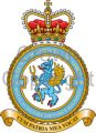 No 2620 (County of Norfolk) Squadron, Royal Auxiliary Air Force Regiment.jpg