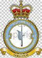 No 37 Squadron, Royal Air Force Regiment.jpg