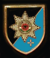 743rd Military Police Battalion, German Army.png