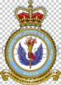 Queen's University Air Squadron, Royal Air Force Volunteer Reserve.jpg