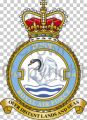 No 1564 Flight, Royal Air Force.jpg