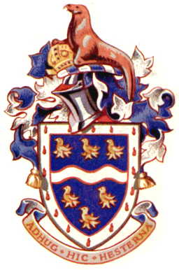 Arms (crest) of Chichester RDC