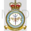 No 360 Squadron, Royal Air Force.jpg