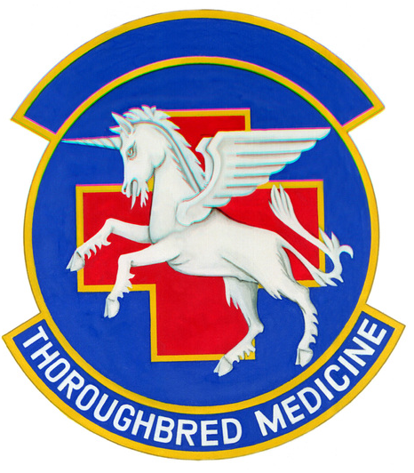 File:123rd Tactical Hospital, US Air Force.png