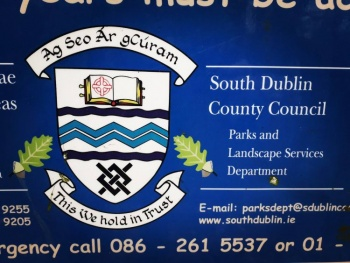 Arms of South Dublin