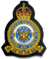 No 133 (Eagle) Squadron, Royal Air Force.png