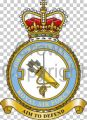 No 4 Force Protection Wing, Royal Air Force.jpg