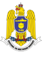 146th Mining- and Demining Division, Romanian Navy.png