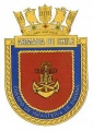 Corps of Marine Infantry, Chilean Navy.jpg