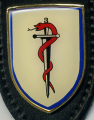 Medical Battalion 3, Germany.png
