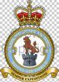 No 903 Expeditionary Air Wing, Royal Air Force.jpg