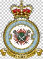 No 7 Force Protection Wing, Royal Air Force.jpg