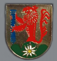Mountain Artillery Regiment 8, German Army.png