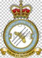 No 3 Force Protection Wing, Royal Air Force.jpg