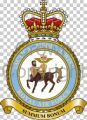 Tactical Medical Wing, Royal Air Force.jpg