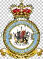 No 3 (Tactical) Police Wing, Royal Air Force.jpg