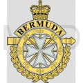 The Royal Bermuda Regiment, British Army.jpg