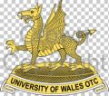 University of Wales Officer Training Corps.jpg