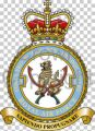 No 8 Force Protection Wing, Royal Air Force.jpg