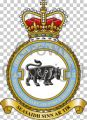 No 2622 (Highland) Squadron, Royal Auxiliary Air Force Regiment.jpg