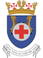 Medical Directorate, Portuguese Air Force.png