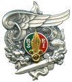 Parachute Company of the 3rd Foreign Infantry Regiment, French Army.jpg
