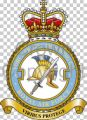 No 6 Force Protection Wing, Royal Air Force.jpg