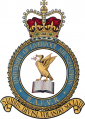 University of Liverpool Air Squadron, Royal Air Force Volunteer Reserve.png