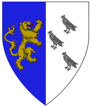 Arms of Darren Wyngaard