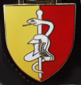 Medical Battalion 1, Germany.png