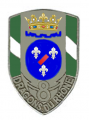 8th Dragoons Regiment, French Army.png