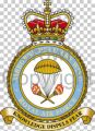 Airborne Delivery Wing, Royal Air Force.jpg