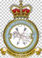 No 2623 (East Anglian) Squadron, Royal Auxiliary Air Force Regiment.jpg