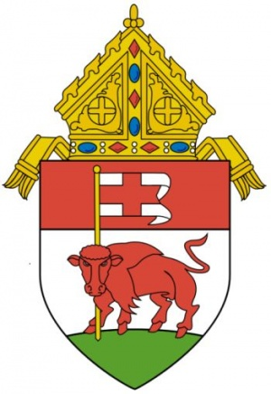 Arms (crest) of Diocese of Buffalo